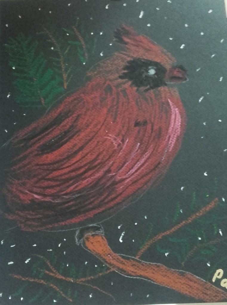 buffalo Cardinal